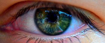 Neuromarketing: una alternativa para tus comunicaciones digitales